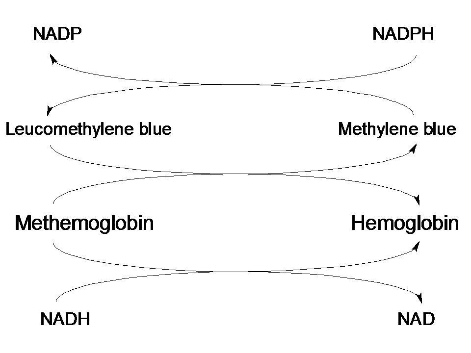 メチレンブルーとメトヘモグロビ...